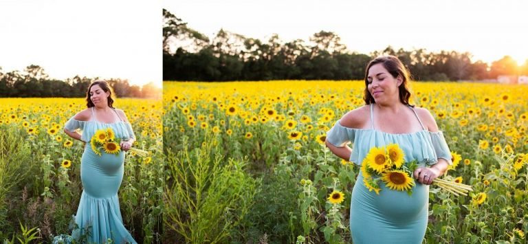 south-jersey-sunflower-photography
